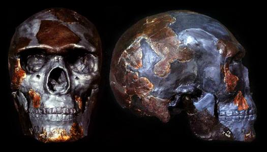Potassium argon dating hominids lucy 2