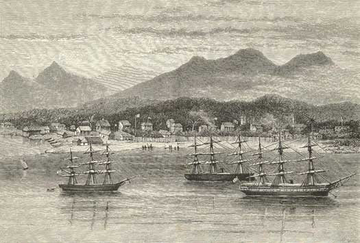 French ships at Tamatave