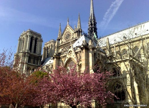 Notre Dame Cathedral of Our Lady of Paris