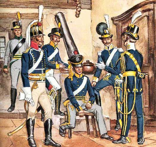 Swedish Troops in the Napoleonic Wars