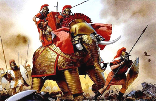 Seleucid war elephants
