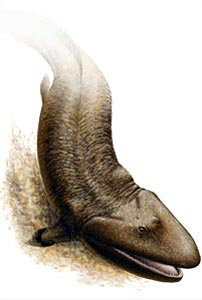 Painting of a Tiktaalik