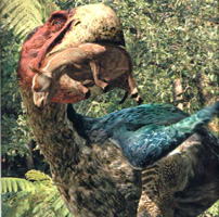 Gastornis kills an early horse