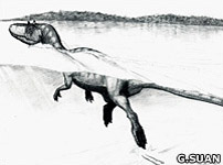 Sketch of a swimming theropod dinosaur (Guillaume Suan, University Lyon)