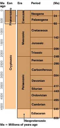 Geological Ages